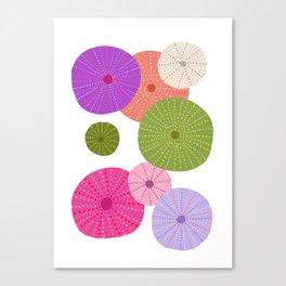 Colorful Sea Urchins 3 Canvas Print