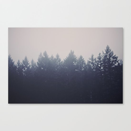 Forest in the Haze Canvas Print