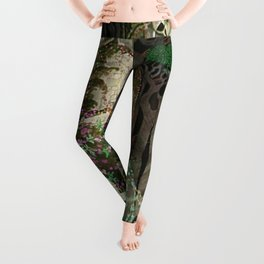 The Prince Looks down on Sleeping Beauty in the Garden of Delights by Kay Nielsen Leggings