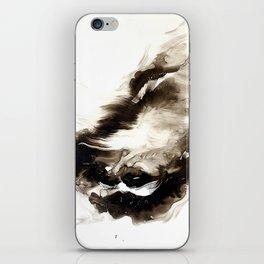 Black + White 2 iPhone Skin