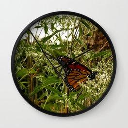 Feeding butterfly Wall Clock