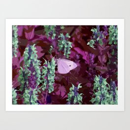 Pink Moth on Green Sage Flowers Painted Photograph Art Print