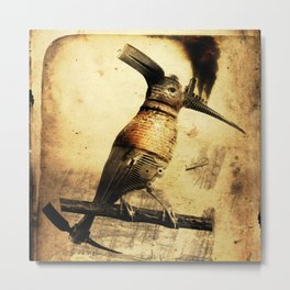 Coalminer Bird Metal Print