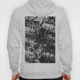Architecture & Neural Network 2. Hoody