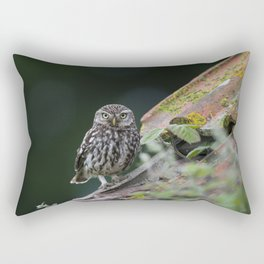 Little Owl Rectangular Pillow