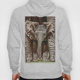 Baby elephant Hoody