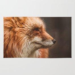 Red Fox (Vulpes vulpes) Rug