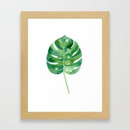 Philodendron Leaf Watercolor Framed Art Print