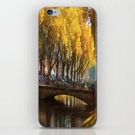 Duesseldorf Koe, Koegraben in golden light iPhone Skin