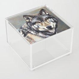 Timber Wolf by Alan M Hunt Acrylic Box