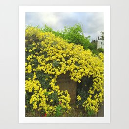 Sorrento Heights (Floral) Art Print