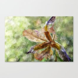 Flower in the Sunlight Canvas Print