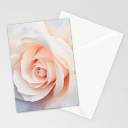 Flowers Photography   Rose   Spring   Easter   Blush Pink Stationery Cards