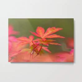 Japanese things 2 61 Metal Print