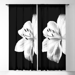 White Lily Black Background Blackout Curtain