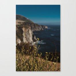 Big Sur Wild Flowers II Canvas Print