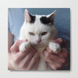Displeased cat Metal Print