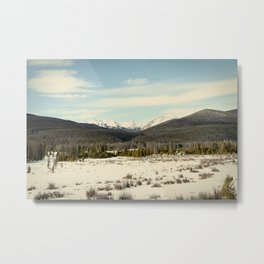 the never summers Metal Print