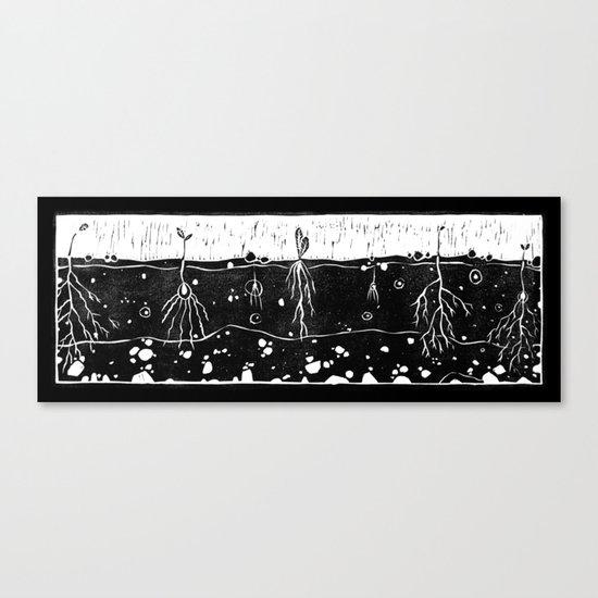 Seeds  Canvas Print
