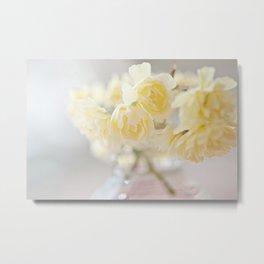 Lady Banks Rose blossoms Metal Print