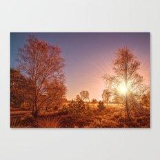 Wisley Common Alone Surrey Canvas Print