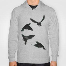 Common Starlings Hoody