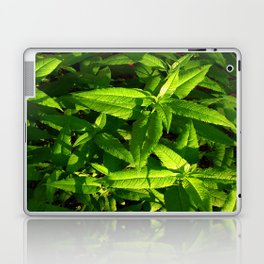 Plants a Plenty Laptop & iPad Skin