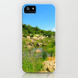"""A Walk on the Wild Side (x)"" by ICA PAVON iPhone Case"