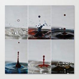 Drip. Canvas Print