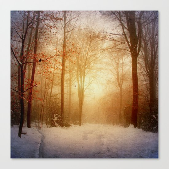warm wintEr glOw Canvas Print