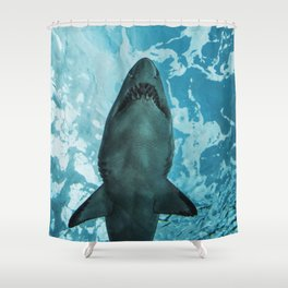 Shark Photography | Deep Sea | Ocean Art | Wildlife | Nature | Fish Shower Curtain