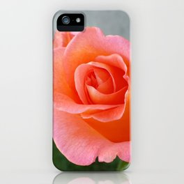 peace offering iPhone Case
