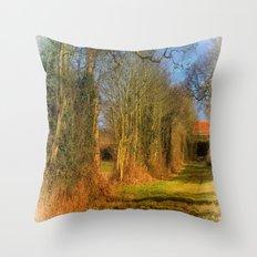 Granny's House Throw Pillow