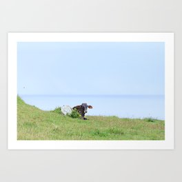 Rosa Cow Art Print