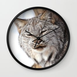 Lovely lynx Wall Clock