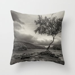 The Lonely Tree Snowdonia Wales Journey of Mountains Throw Pillow