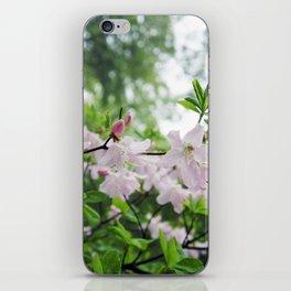 secret garden 14 iPhone Skin
