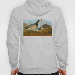 Barnacle Goose Audubon Birds Vintage Scientific Hand Drawn Illustration Hoody