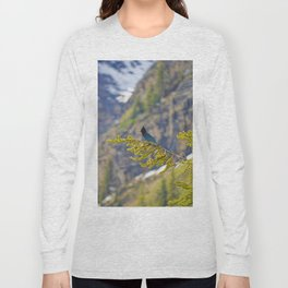 Steller's Jay (Canadian Blue Jay) in the forest Long Sleeve T-shirt
