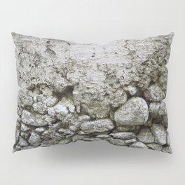 earth textures Pillow Sham