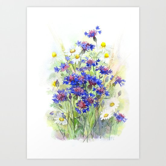 Meadow watercolor flowers with cornflowers Art Print