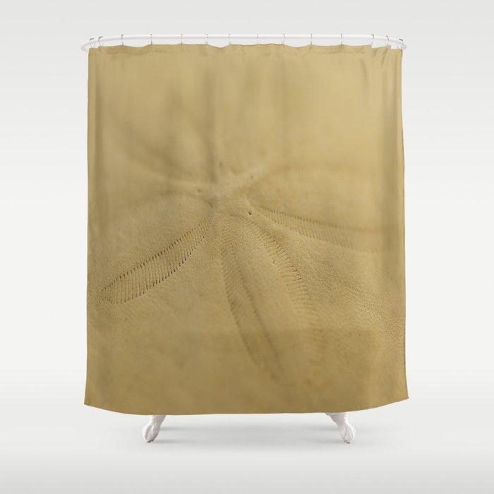 SAND DOLLAR, SHELL, CREAM,SEASHORE Shower Curtain