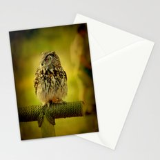 Keeping one eye open Stationery Cards