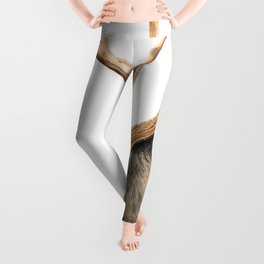 White-Tailed Buck Leggings