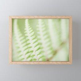 Fern 12 Framed Mini Art Print