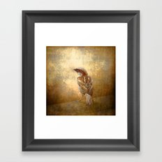 The little brown sparrow Framed Art Print