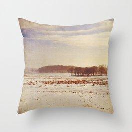 Snowy Landscape. Throw Pillow