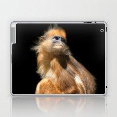 Banded Leaf Monkey Howletts Laptop & iPad Skin