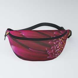 Deep red gerbera flower macro photo photography Fanny Pack