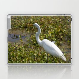 Great Egret on the Prowl Laptop & iPad Skin